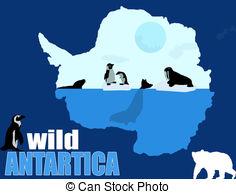 Wild Antartica poster background, vector illustration