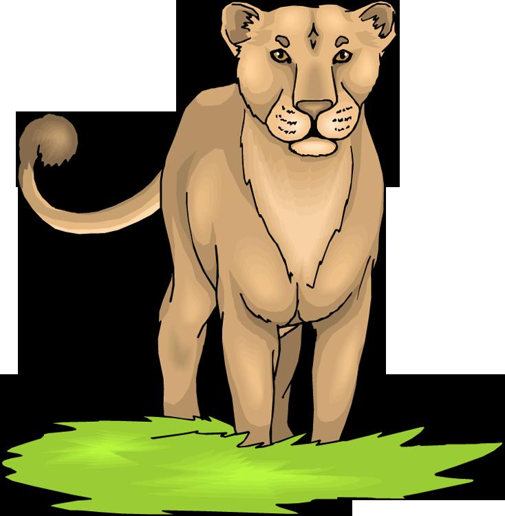 Wild Lioness Clipart
