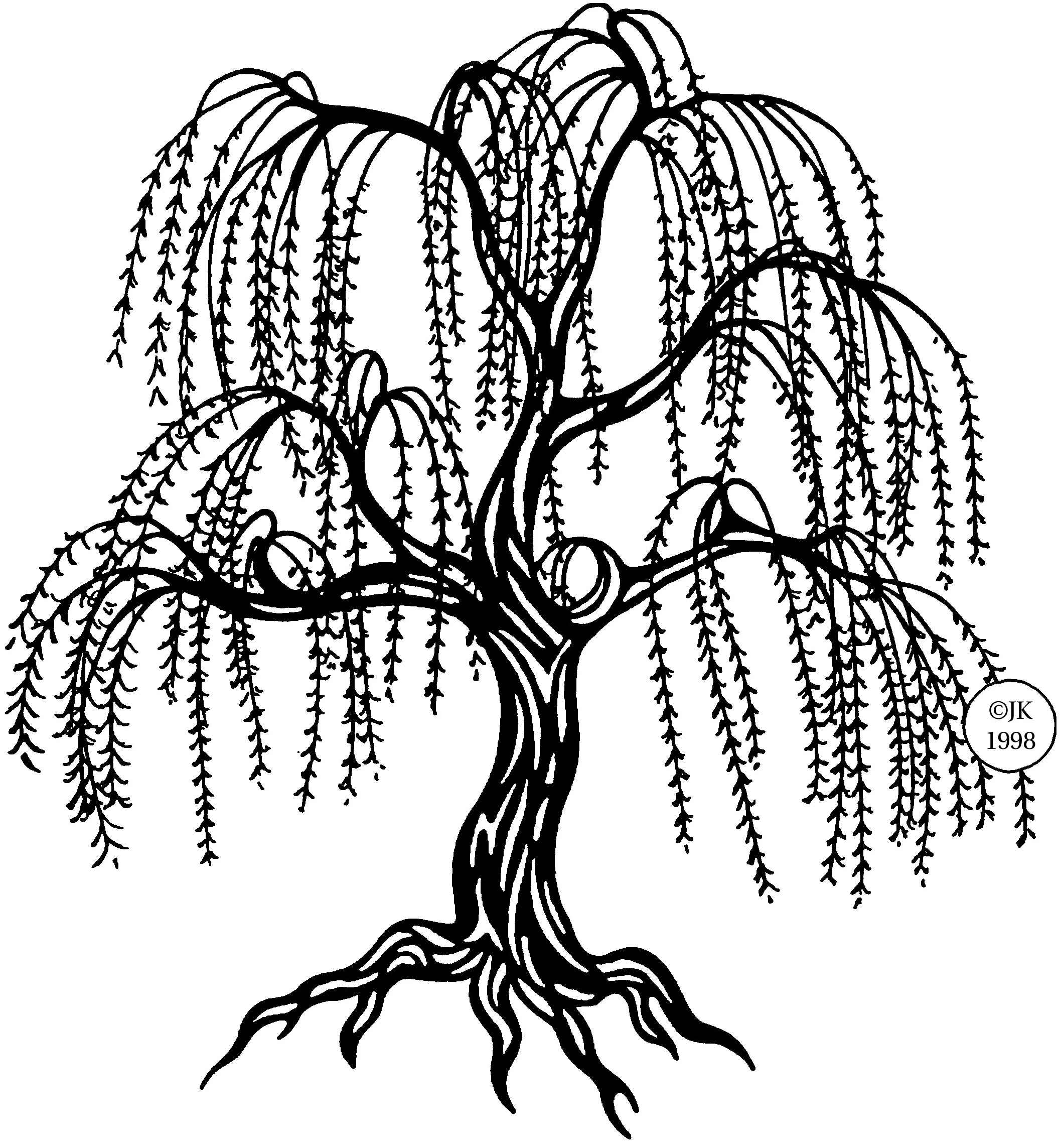 Willow Tree Vector; clipart .