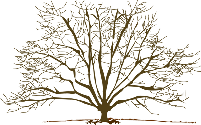 Winter Tree Clip Art
