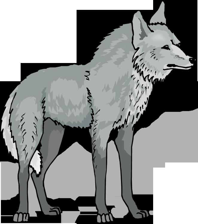 Wolf clipart Wolf animals clip art-Wolf clipart Wolf animals clip art-8