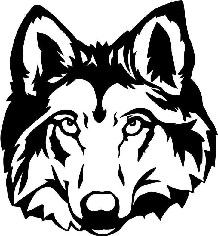 Wolf head. Clipart look at clip