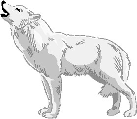 Wolf sitting. Clip art clipartlook