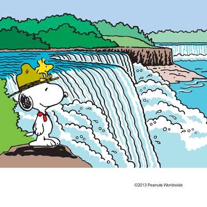 Woodstock at Waterfall .