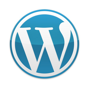 I Should Preface This By Saying Weu0027r-I should preface this by saying weu0027re a Wordpress firm and that almost all  of our websites are made in Wordpress. We feel that strongly about the  platform.-8