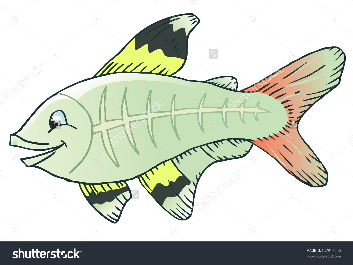 X-ray tetra cartoon fish. Save to a lightbox