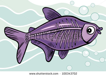 Xray Fish Clipart X Ray Fish Stock Photo