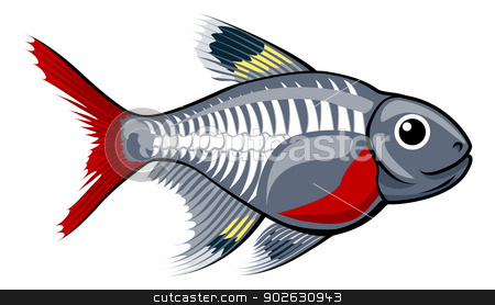 Xray Fish Clipart X Ray Tetra Cartoon Fish Stock