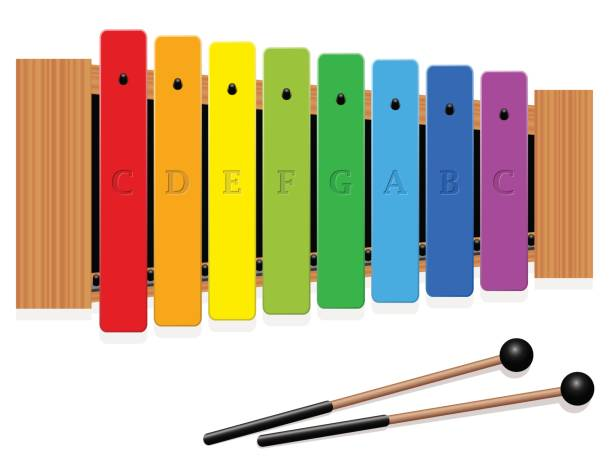 Glockenspiel or metallophone in c major with eight labeled bars, one  octave, in different