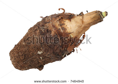 Yam Clipart