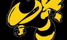 Yellow Jacket Clip Art-Yellow Jacket Clip Art-15