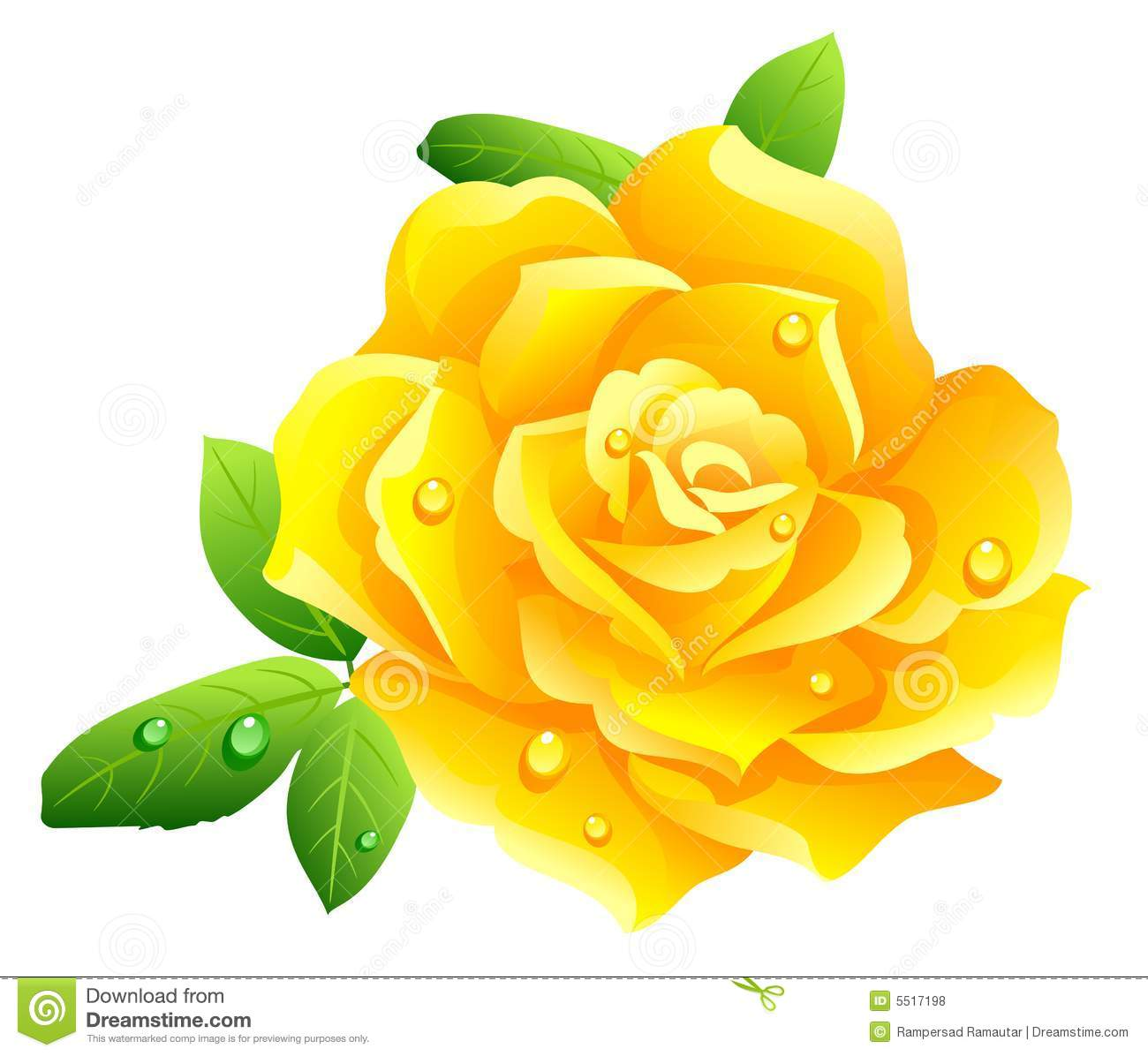 Yellow Rose Clip Art Yellow Rose Isolated On White