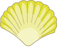 yellow sea shell clipart. Size: 64 Kb