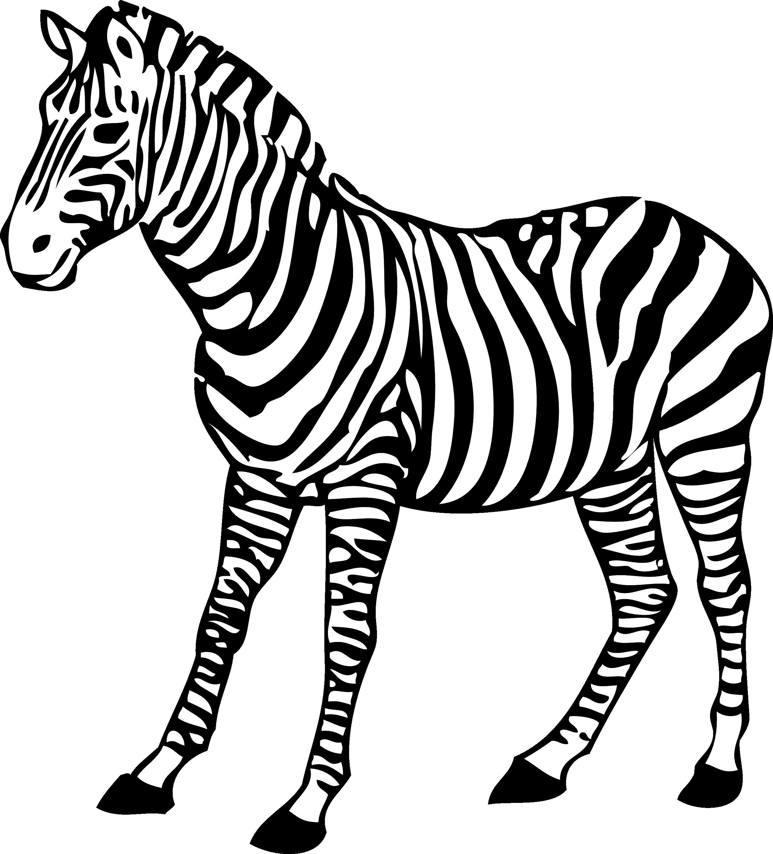 Zebra Clipart Black And White-zebra clipart black and white-13