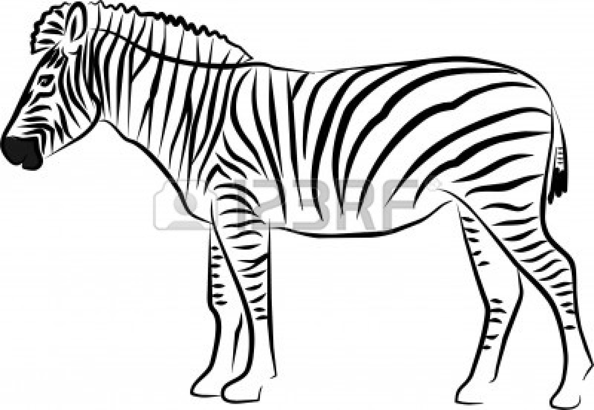 zebra clipart black and% .