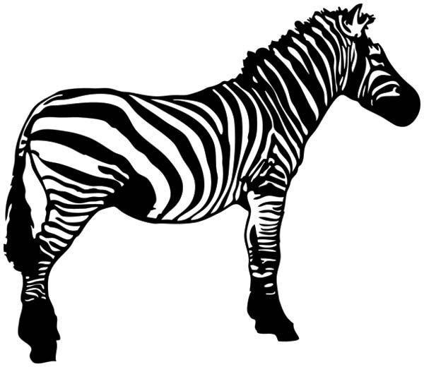 zebra head clipart - Zebra Clipart Black And White