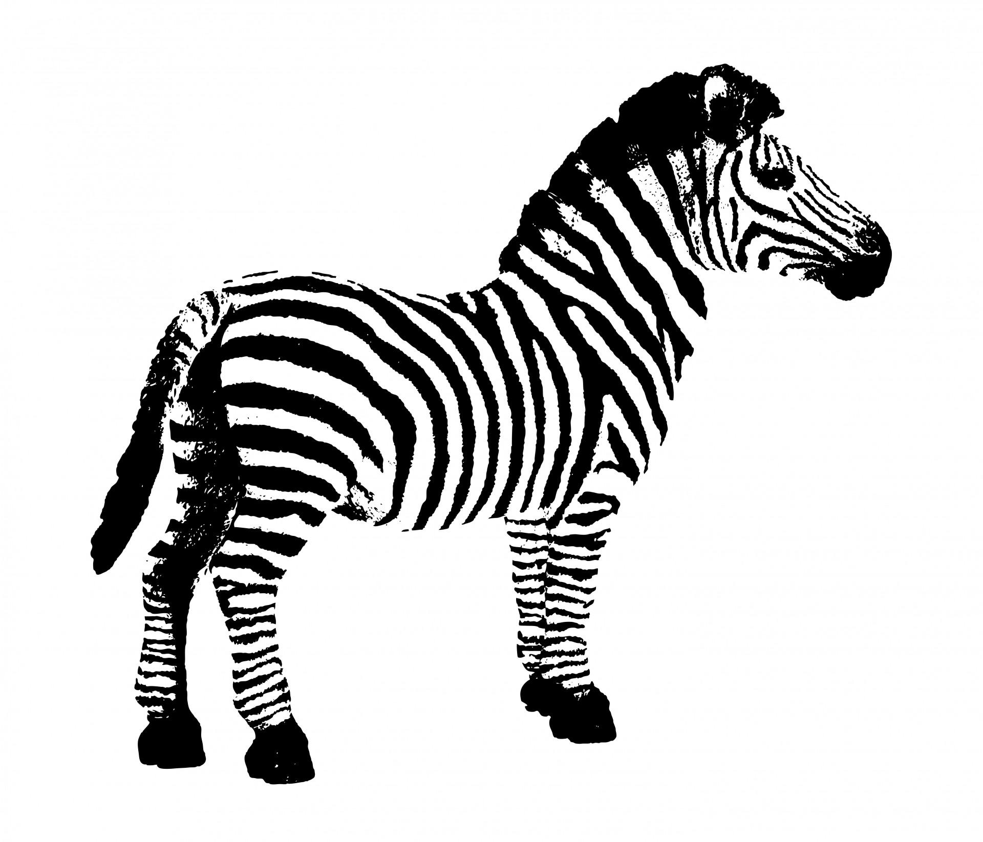 Zebra Clip Art Free - Cliparting Clipart-Zebra clip art free - Cliparting clipartall clipartall.com .-16