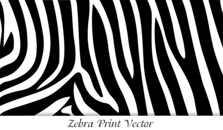 Zebra Print-Zebra Print-16