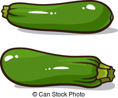 ... Zucchini - Vector illustration of zucchinis isolated on a.